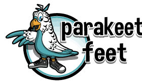 New eCommerce Design Project – Parakeet Feet!