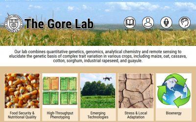 WordPress Design Project – The Gore Lab