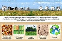 WordPress Design Project – The Gore Lab